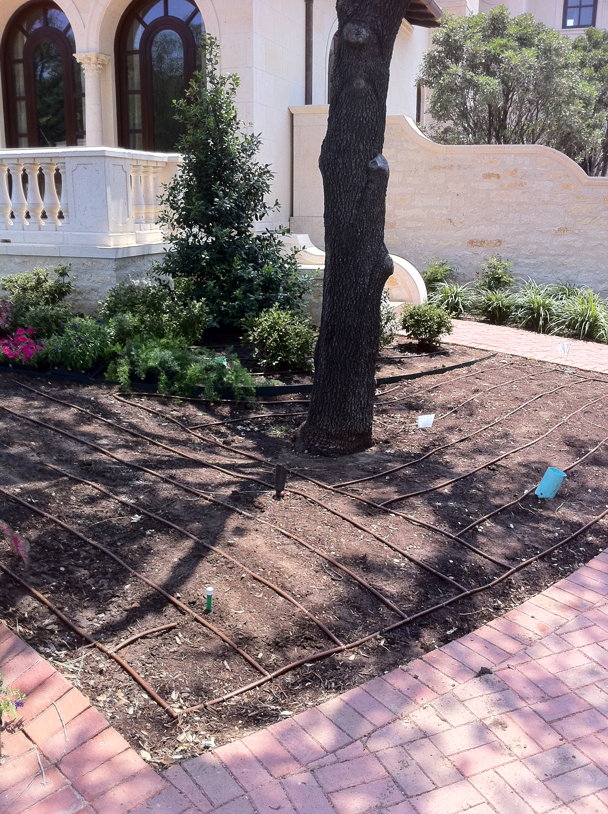 Drip Irrigation Installation and Landscaping