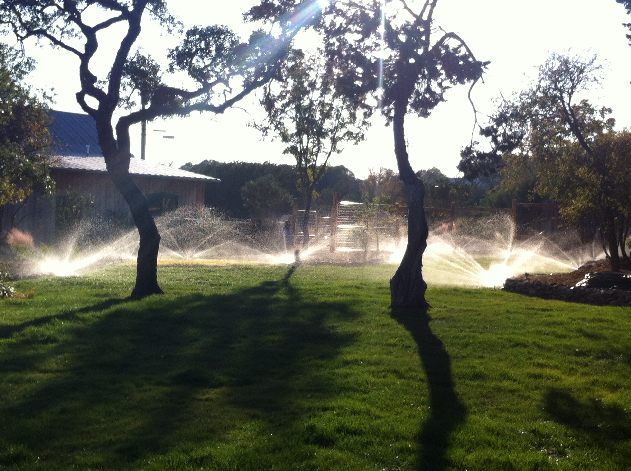 Sprinkler & Irrigation System Active