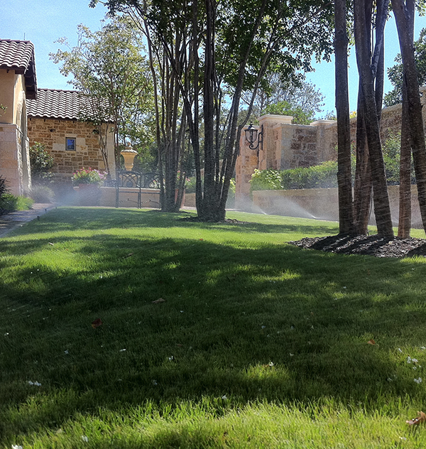 Backyard Sprinkler System